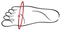 Tabela tęgości - stopa